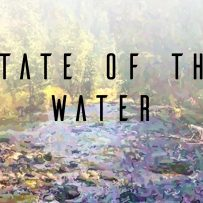 State of the Water