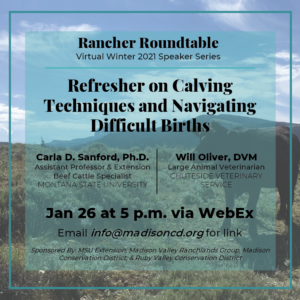 Rancher Roundtable Winter 2021 Speaker Series: Refresher on Calving Techniques and Navigating Difficult Births @ Webex